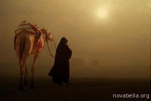 beduino0