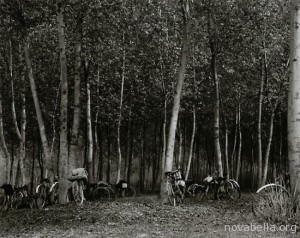 paul_strand_bicycles